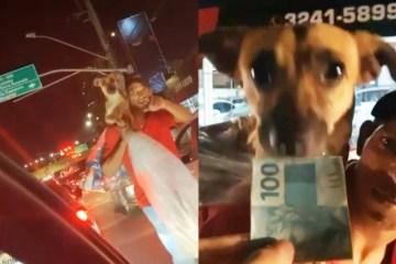 Gusttavo Lima para carro e ajuda catador com cão no ombro – VEJA VÍDEO