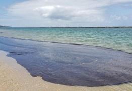 DESASTRE AMBIENTAL: PF faz operação contra suspeitos de vazamento de óleo nas praias do Nordeste