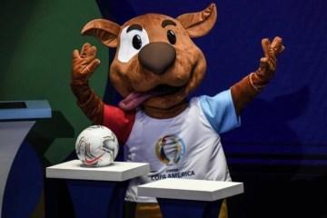 Vira-lata caramelo é o novo mascote da Copa América 2020