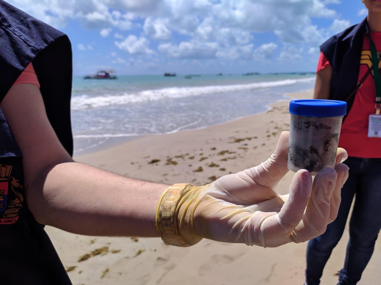 fezes tartarugas mar areia foto ewerton correia - Prefeito de Cabedelo acusa catamarãs de 'limpar banheiros' na praia, mas UFPB esclarece que fezes são de tartarugas
