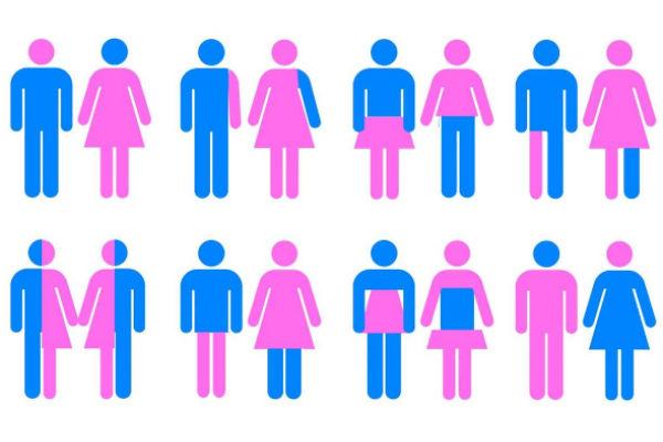 """genero binario - Dicionário de termos de gênero e sexualidade  ensina termos como 'cis', 'trans' e 'não-binário"""""""