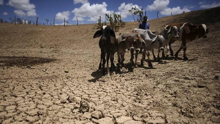 seca 1 - Governo do Estado decreta situação de emergência em 148 municípios da Paraíba
