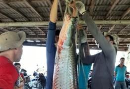 Pescador captura pirarucu de mais de 90kg no interior da Paraíba