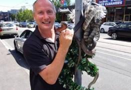 Homem decora árvore de Natal com cobras