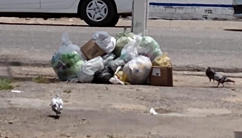 Lixo 1 - Prefeitura firma contrato de 167 dias no valor de R$ 620 mil para a coleta emergencial do lixo