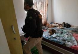 OPERAÇÃO ARATANHA: PF cumpre mandados em CG em operação contra assalto a bancos e carros-fortes