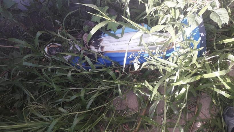 portaldoholanda 974211 imagem foto 1amazonas - Capela é alvo de vandalismo e imagem de Nossa Senhora da Conceição é queimada