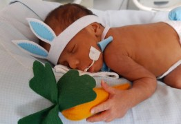 HUMANIZAÇÃO DOS PACIENTES: Bebês de UTI Neonatal são fantasiados de 'coelhinhos da Páscoa'