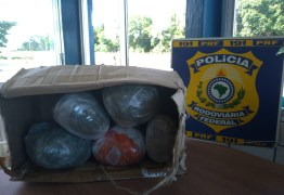 PRF na Paraíba prende homem com 5 kg de maconha