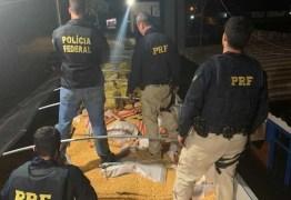 Polícia Federal faz uma das maiores apreensões de maconha