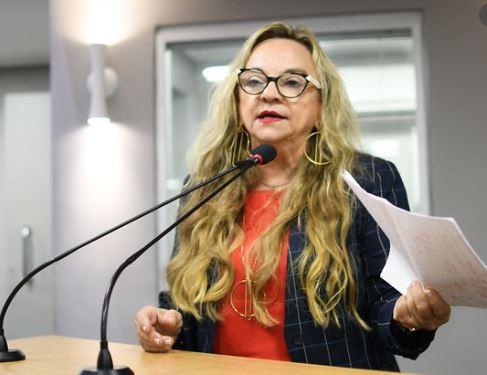 paula - Drª Paula externa preocupação com finanças dos municípios em tempos de pandemia, durante participação em debate sobre a  LDO/2021