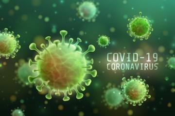 Coronavirus AbcReporter - CORONAVÍRUS: Paraíba registra 363 novos casos de Covid-19 em 24h