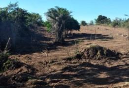 Polícia Militar realização ações de combate ao crime de desmatamento na Paraíba