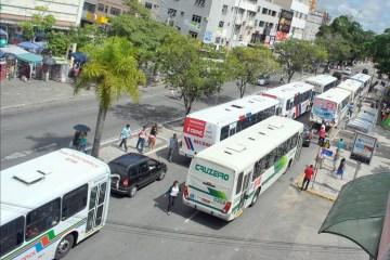 campina grande onibus - Campina Grande acrescenta seis linhas de transporte coletivo e frota sobe para 45%