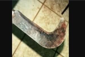 foice   jerico 300x200 - NA PARAÍBA: mulher esfaqueia e esquarteja marido após discussão, aciona a polícia e confessa o crime
