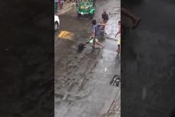 maxresdefault 2 - Homem usa cano para salvar cachorro atacado por cobra de 4 metros - VEJA VÍDEO