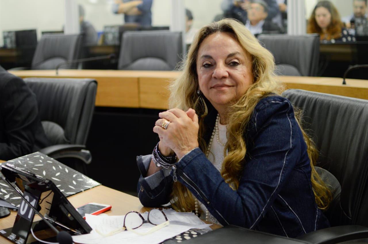 Dra. Paula Meirelles 1 - Drª Paula emite nota de solidariedade e pesar ao colega deputado Tião Gomes