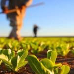 pb - Ações do PB Rural Sustentável garantem a preservação do meio ambiente