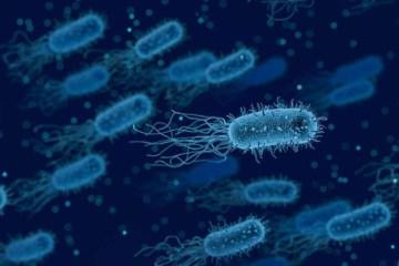 BATC - Bactéria vazada: Acidente em laboratório contamina mais de 3.000 pessoas na China