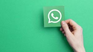 naom 5e7c8be3d13ac 300x169 - WhatsApp vai lançar chamadas de voz e vídeos para computador