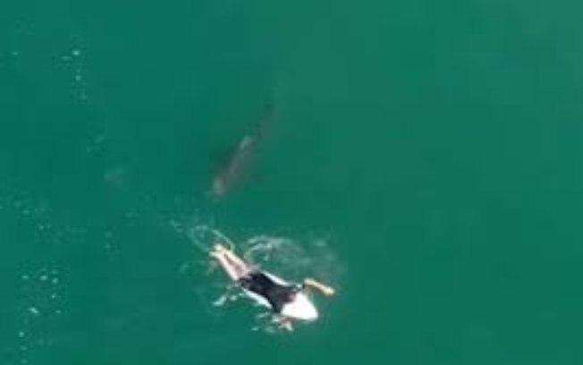 1tmnqk7g722xox8m5sb69rw8j - Surfista desaparece após ataque de tubarão; VEJA VÍDEO