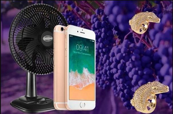 5588474 - Anel de jacaré, iPhone e ventilador: veja bens declarados nas Eleições 2020