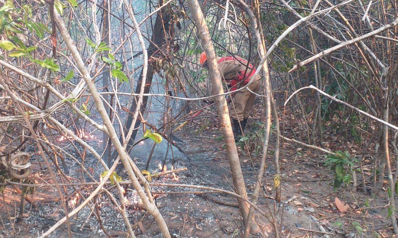 incendio cahapa - Incêndio na Chapada dos Veadeiros é contido após duas semanas