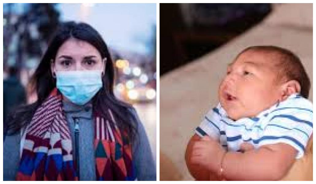 1605382348748003 - Microcefalia e pandemia, um Fractal? - Por Rosita Fonteles