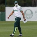 1 abel - Técnico do Palmeiras testa positivo para Covid-19