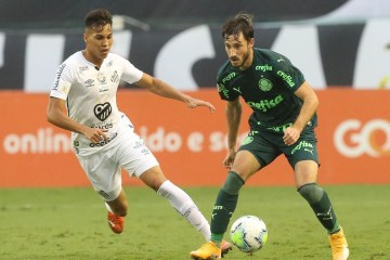 50683581378 b3c81ccaef o - Final da Libertadores faz CBF mudar jogos de Palmeiras e Santos