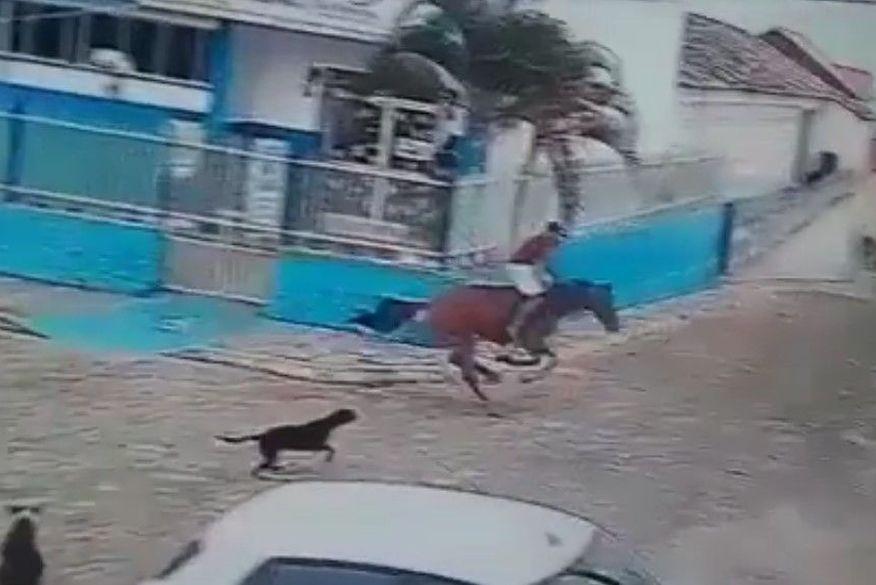 cavalo desgovernado - Homem morre após cavalo se chocar contra muro, na cidade de Serraria - VEJA VÍDEO