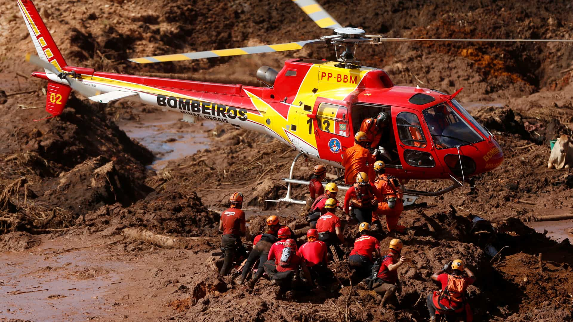 naom 5c5024fa14c2b - UFMG monta laboratório para avaliar danos da tragédia de Brumadinho