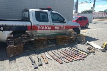 operacao policia ambiental - Operação da Polícia Ambiental apreende aves silvestres em João Pessoa