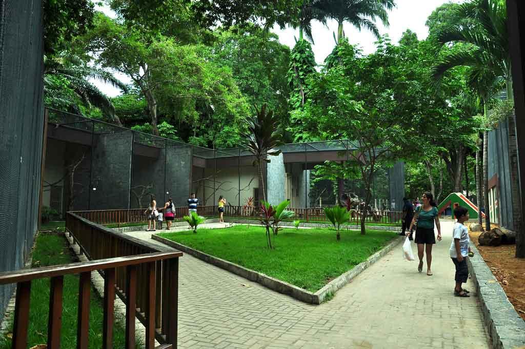 117fb15f8630cbb98bbff0734367845e 1 - CARNAVAL TRADIÇÃO: Parque da Bica vai sediar exposição temática de Ala Ursas