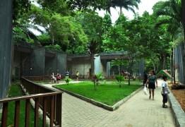 CARNAVAL TRADIÇÃO: Parque da Bica vai sediar exposição temática de Ala Ursas