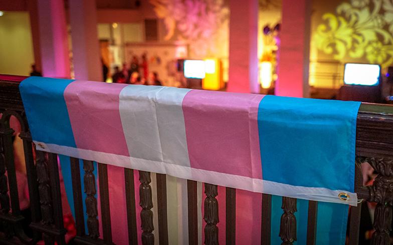 noticiasconcursos.com .br pt pede adequacao de atendimento medico para pessoas trans bisexual pride flag - PT pede acesso de pessoas trans às especialidades médicas condizentes com suas necessidades biológicas
