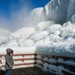 xblog niagara 1.jpg.pagespeed.ic .3 wZwLkO2o - Cataratas do Niágara congelam em meio a forte frente fria - VEJA VÍDEO