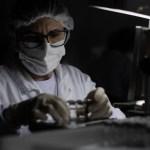 16106455846000805006edb 1610645584 3x2 md - Governo federal rejeitou 70 milhões de doses da Pfizer; 3 milhões poderiam já ter sido aplicadas