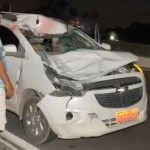 Capturar.JPGqw  - GRAVE ACIDENTE: Cavalo morre após ser atingido por carro na BR-230
