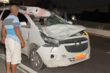 GRAVE ACIDENTE: Cavalo morre após ser atingido por carro na BR-230