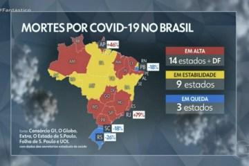 Paraíba apresenta redução de 18% no número de mortes por Covid-19; apenas três estados estão em queda