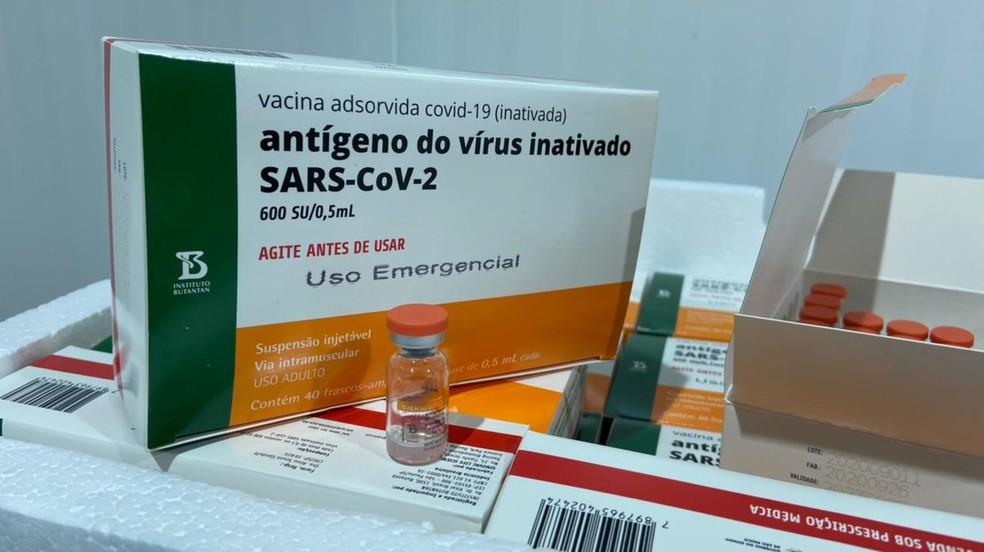 vacina paraiba - Paraíba vai receber mais 180,7 mil doses de vacina contra a Covid-19 nesta quinta-feira (1º)
