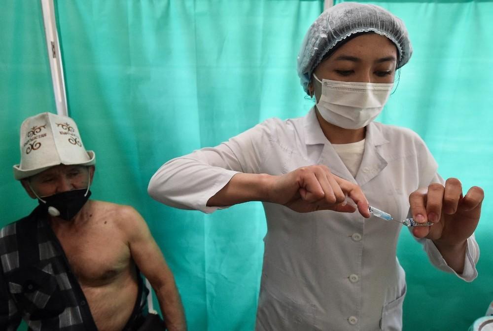 000 9ag4np - Quirguistão perde mil vacinas contra a Covid-19 de refrigerador desligado para carregar celular