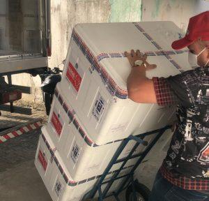WhatsApp Image 2021 05 03 at 16.15.58 e1620070134413 300x288 - 121 MIL DOSES: Paraíba recebe novo lote de vacinas contra a Covid-19
