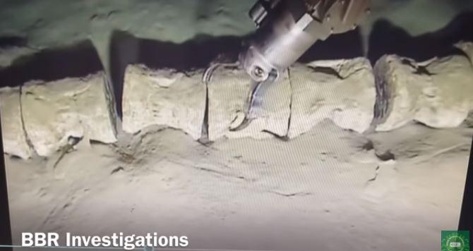 esqueleto - Esqueleto gigante encontrado nas profundezas do oceano intriga pesquisadores; VEJA VÍDEO
