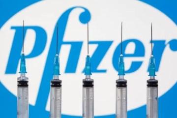 pf - Governo recusou seis propostas de vacinas da Pfizer - Confira quais foram