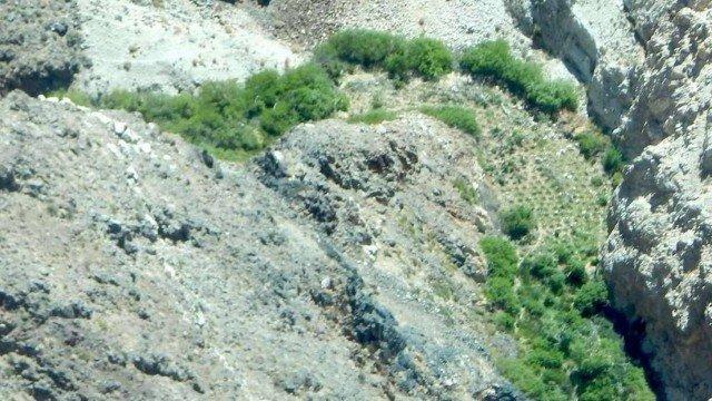 xblog marijuana.jpg.pagespeed.ic .SMvVGwbCTf - Grande número de pés de maconha é achado em cânion no Vale da Morte