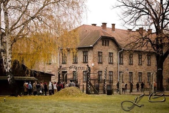 Auschwitz (5)