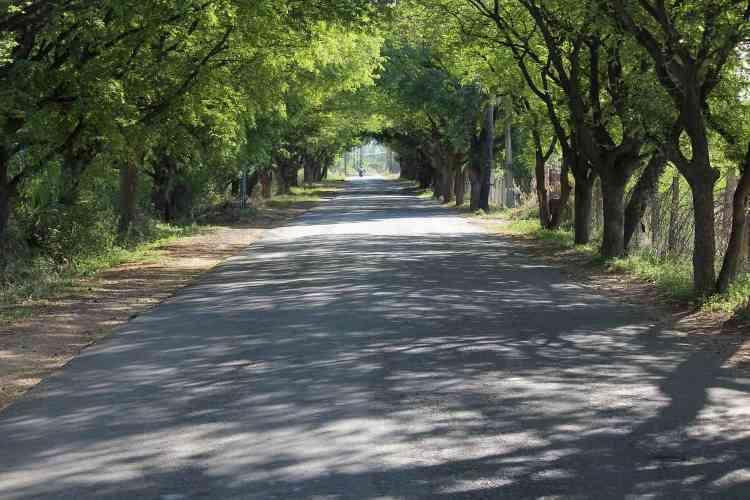Madhya Pradesh roads