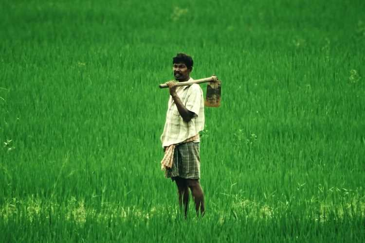 financial inclusion of farmers